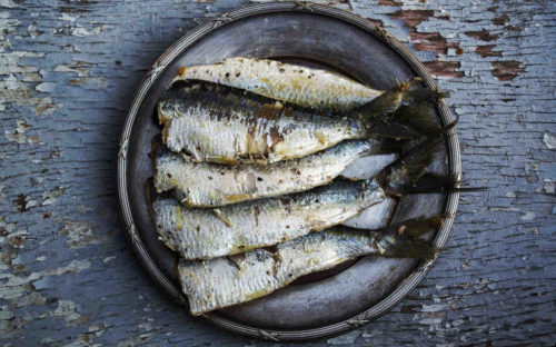fatty fish and seafood are rich source of omega-3