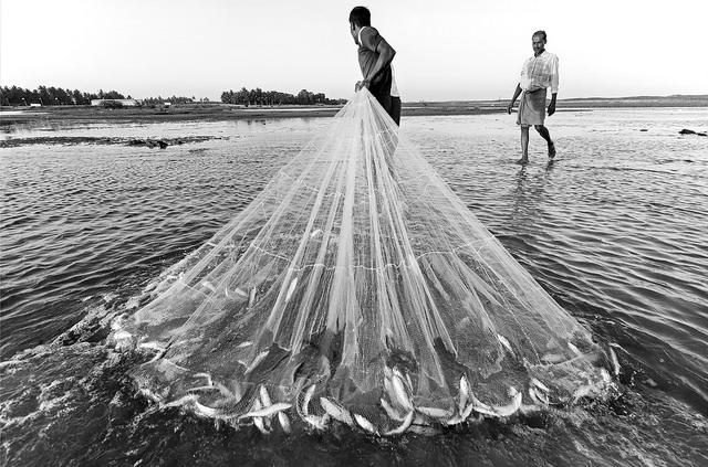 Fishing omega 3
