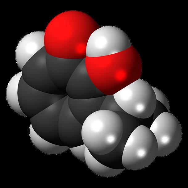 intelligent labs antioxidant