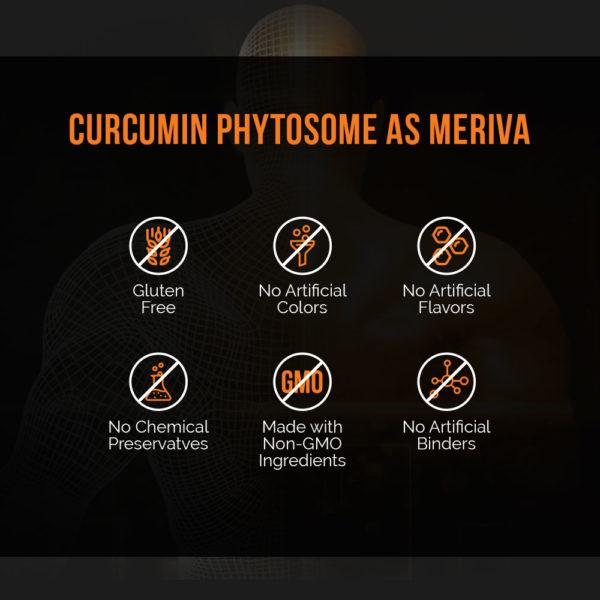 Meriva Curcumin Intelligent Labs