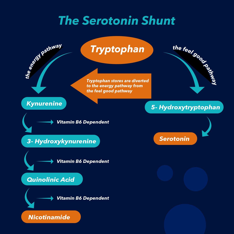 the serotonin shunt