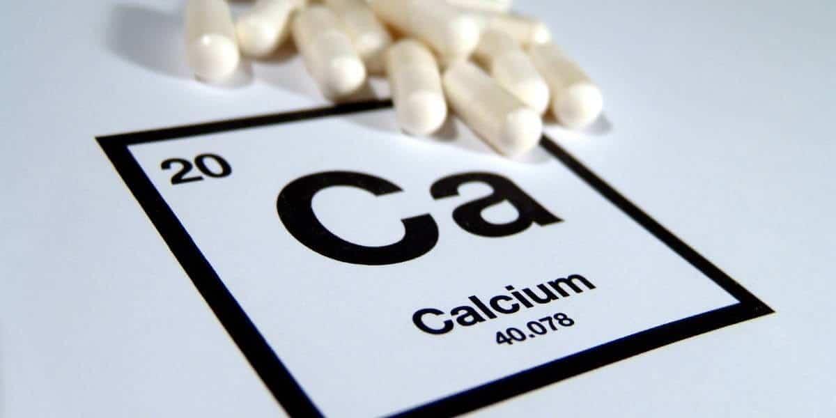 The body needs calcium to survive