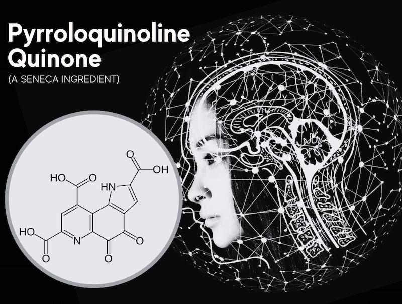 featured image for article on PQQ or pyrroloquinoline quinone, a seneca ingredient