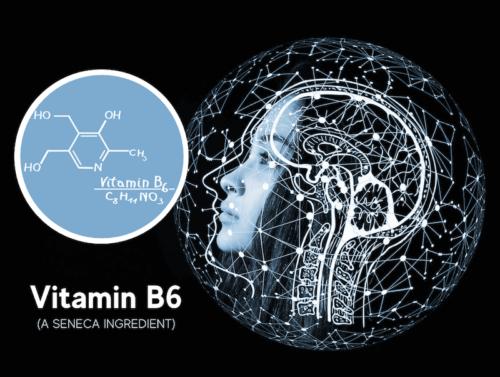 featured image for seneca nootropic article on vitamin b6 Pyridoxal 5 Phosphate